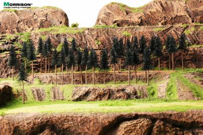 Набор сосен высотой 8 см. (10 шт.)