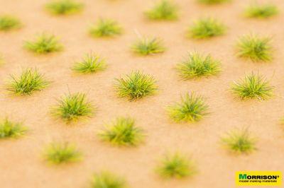 Пучки травы для макета. Свежая трава.