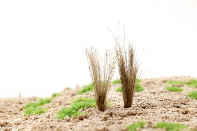 """Высокие пучки травы """"Сухостой"""". Набор 10 штук."""
