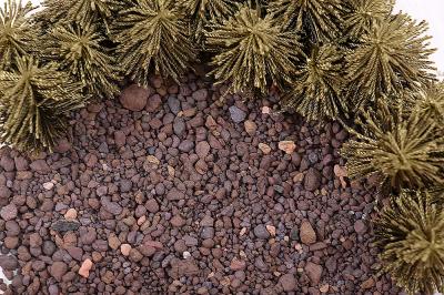 Каменный грунт
