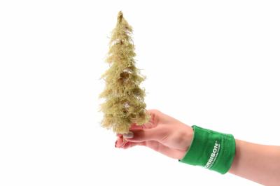 Дремучая ель для макета леса 20 см.