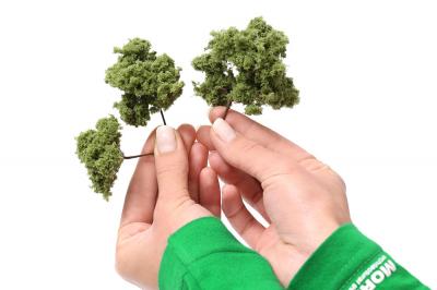 Дерево для архитектурного макета.