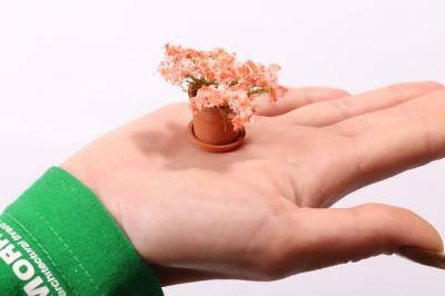 Нежно-розовый лепесток