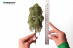 20 см. Дерево для диорамы
