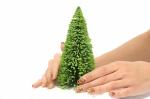 15 см. макет дерева