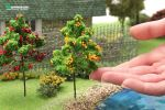 Фруктовое дерево для макета с желтыми плодами. Высота 10 см.
