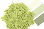 Фолиаж. Лесная зелень