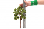 Модель лиственного дерева 25см.