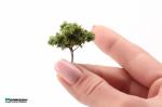 Дерево для архитектурного макета 3 см. Тёмная крона.
