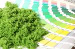 Фолиаж. Городское озеленение