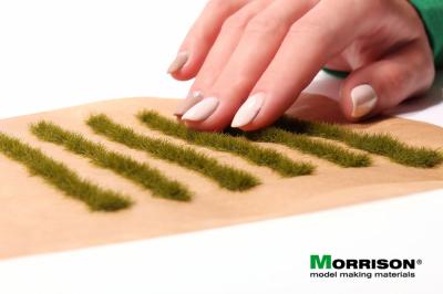 Полосы травы для макета. Лесная трава.